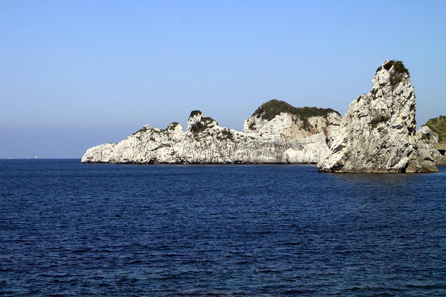 和歌山県白崎沖での海洋散骨