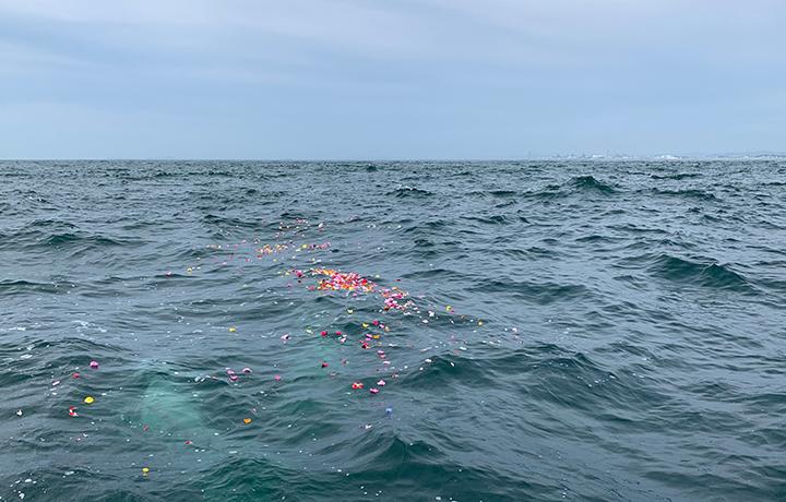 明石沖での海洋散骨